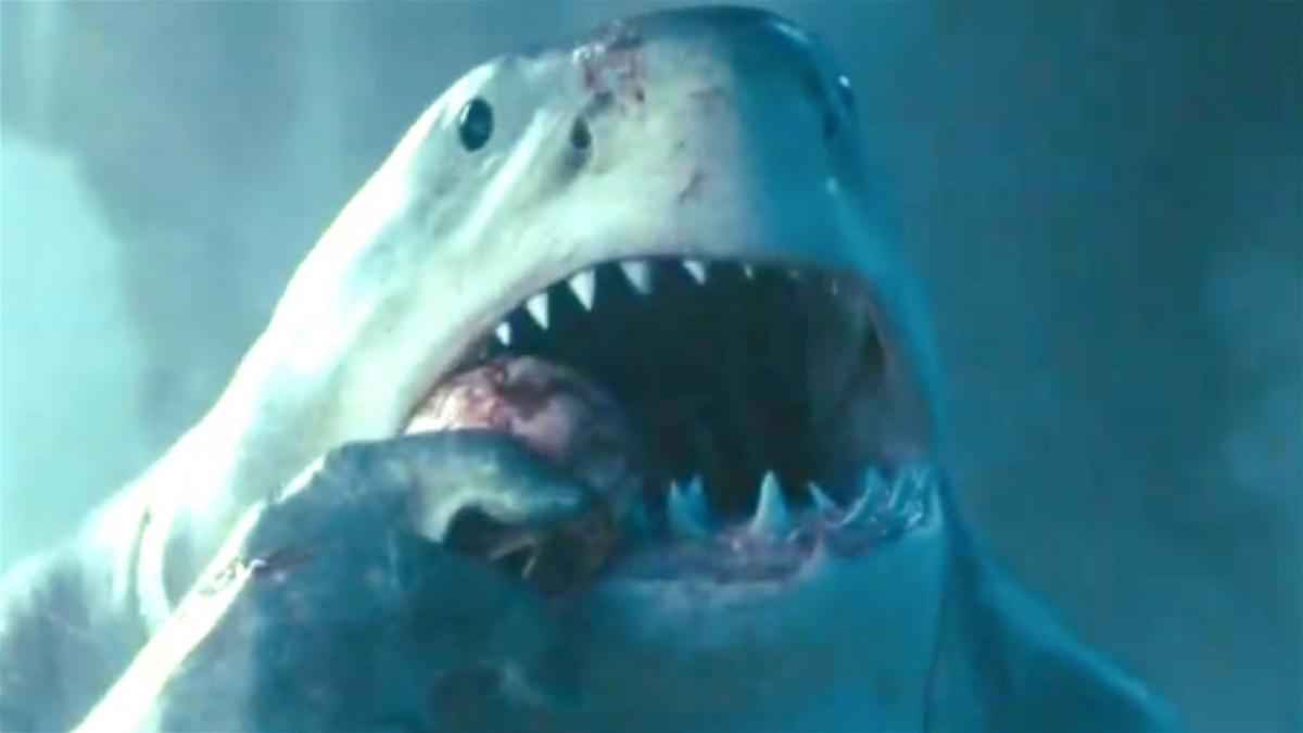 The notable differences between the Suicide Squad's King Shark and the one from Rocksteady's video game